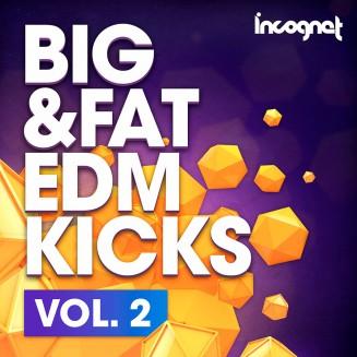 Incognet Big & Fat EDM Kicks Vol.2
