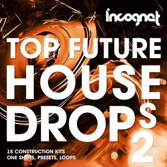 Top Future House Drops Vol.2